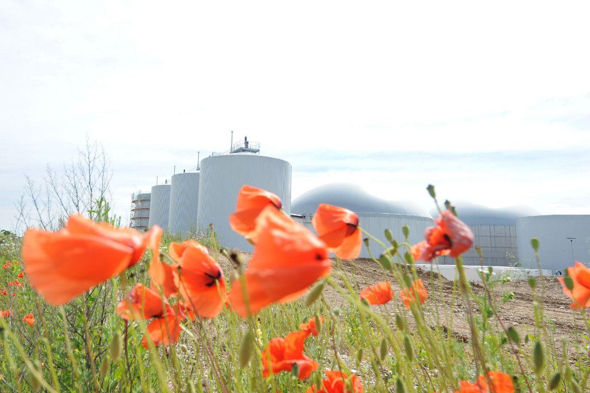 Einfach erklärt: Wie funktioniert eine Biogasanlage?