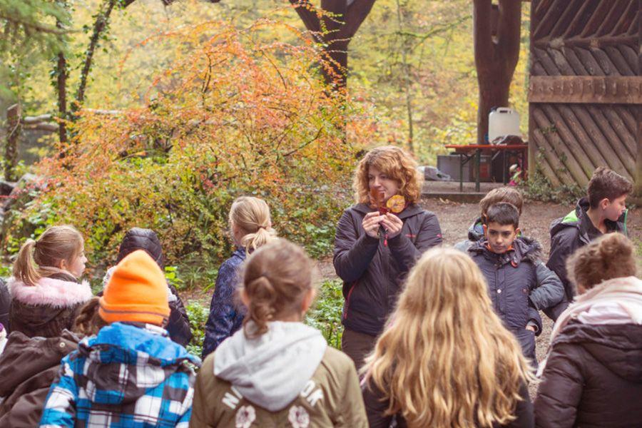 Klimapflanzschule: Umweltbildungsprojekt der Stiftung Waldhaus