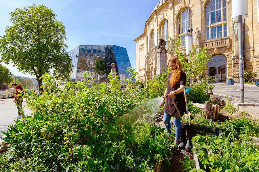Freiburg, Vancouver oder Wien? Welche ist die wahre Green City?