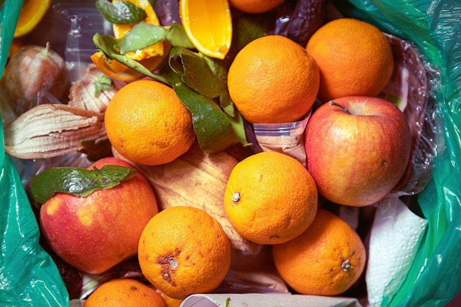 Weniger Lebensmittel wegwerfen & einen wertvollen Beitrag zur CO2 Ersparnis leisten