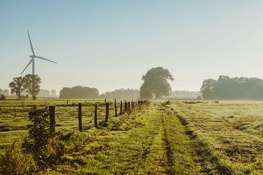 Windrad auf dem Feld