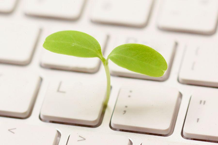 Klimakiller: Internet – so verbesserst Du Deinen digitalen, ökologischen Fußabdruck