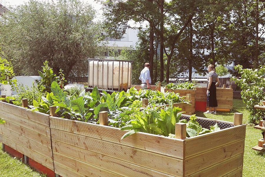 Blühendes Industriegebiet – ein Urban Gardening Projekt