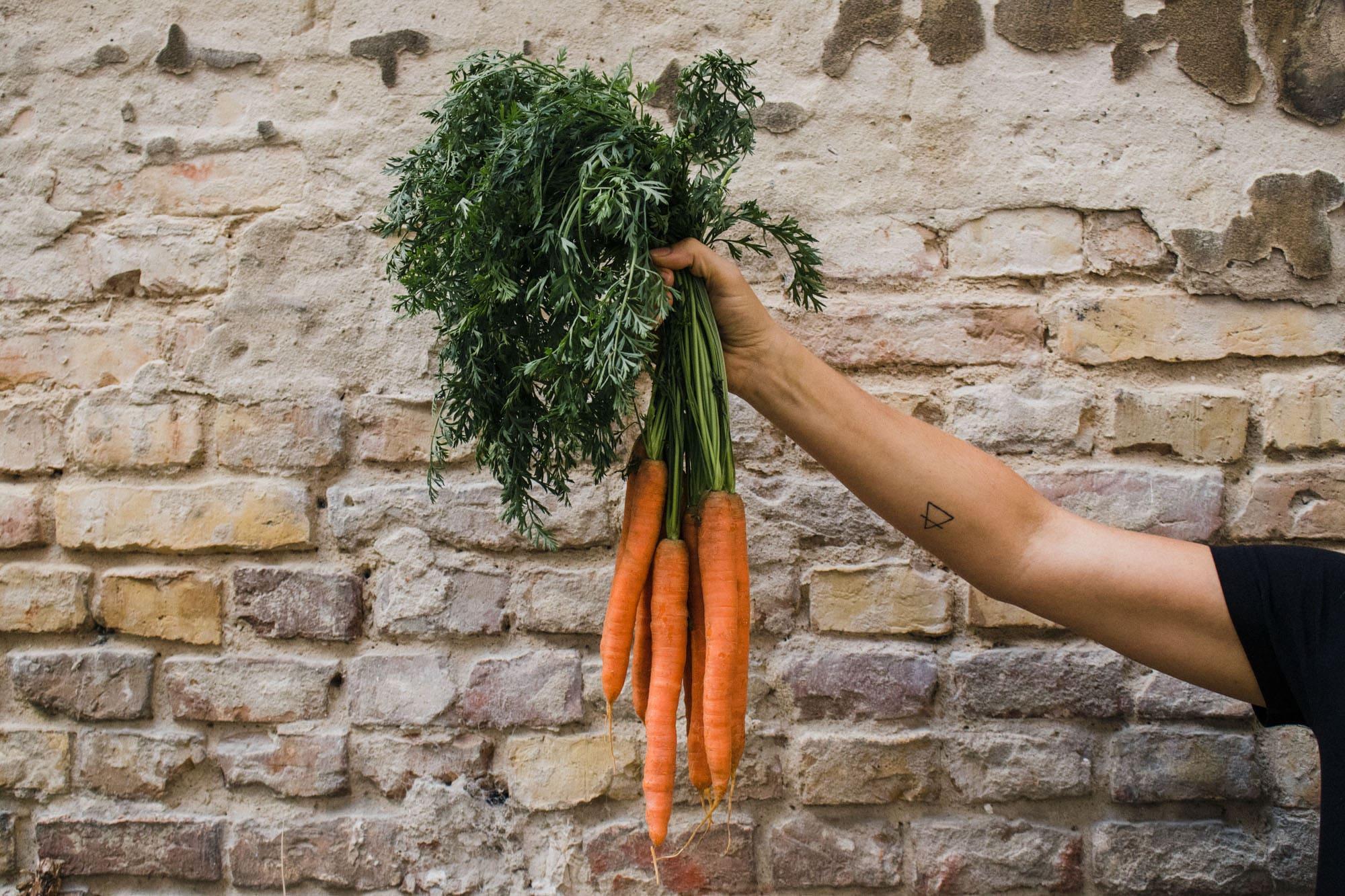 Karotten-Bund aus der Region