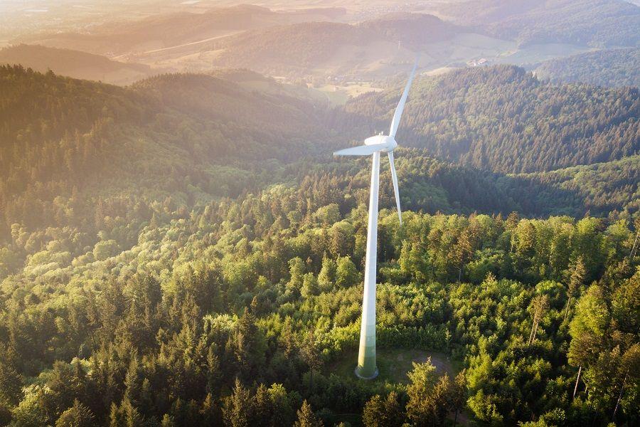 Wie nachhaltig ist Ökostrom wirklich? – Wie wir in Sachen erneuerbare Energie die richtige Wahl treffen, haben wir eine Expertin gefragt