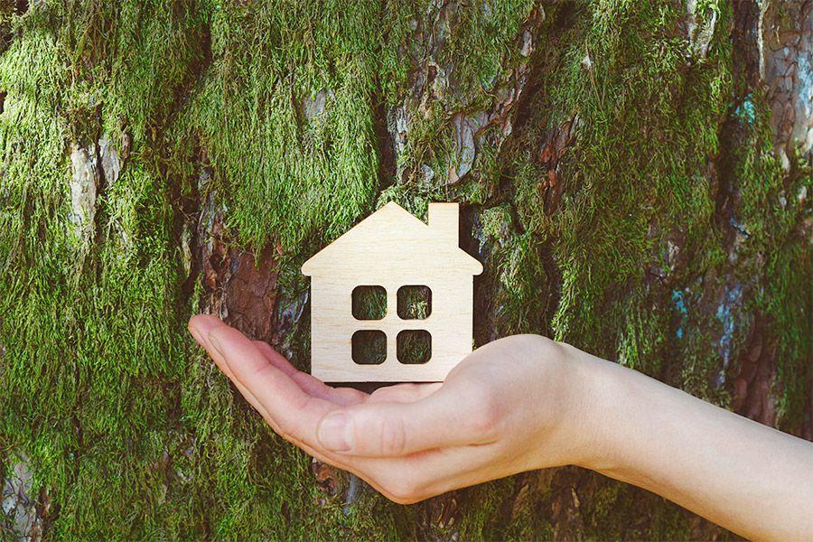 Smart Home und Nachhaltigkeit