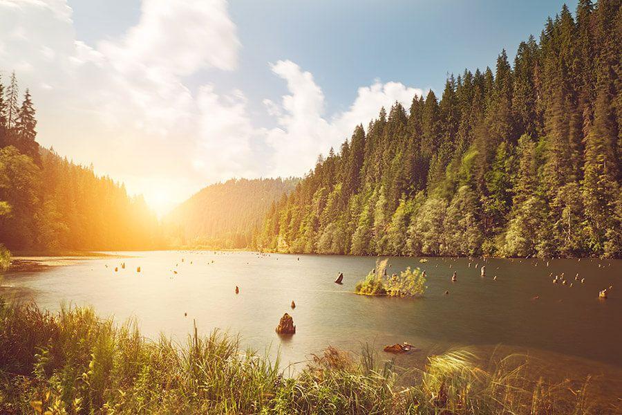 Warum ist der Wechsel zu Ökostrom sinnvoll?