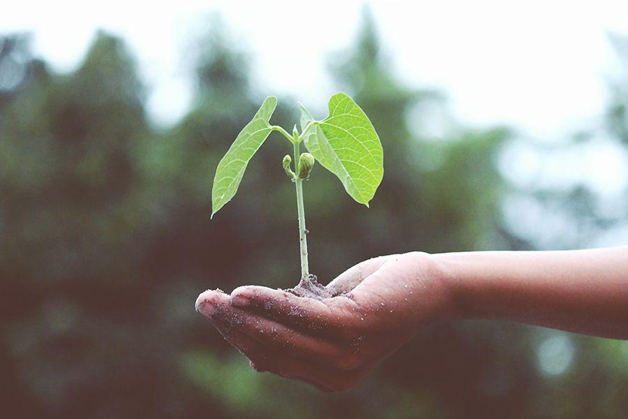 Nachhaltigkeit sichert unsere gemeinsame Zukunft