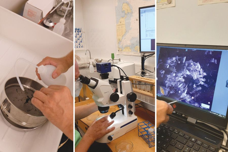 Laboruntersuchung der Wasserproben aus dem Rhein
