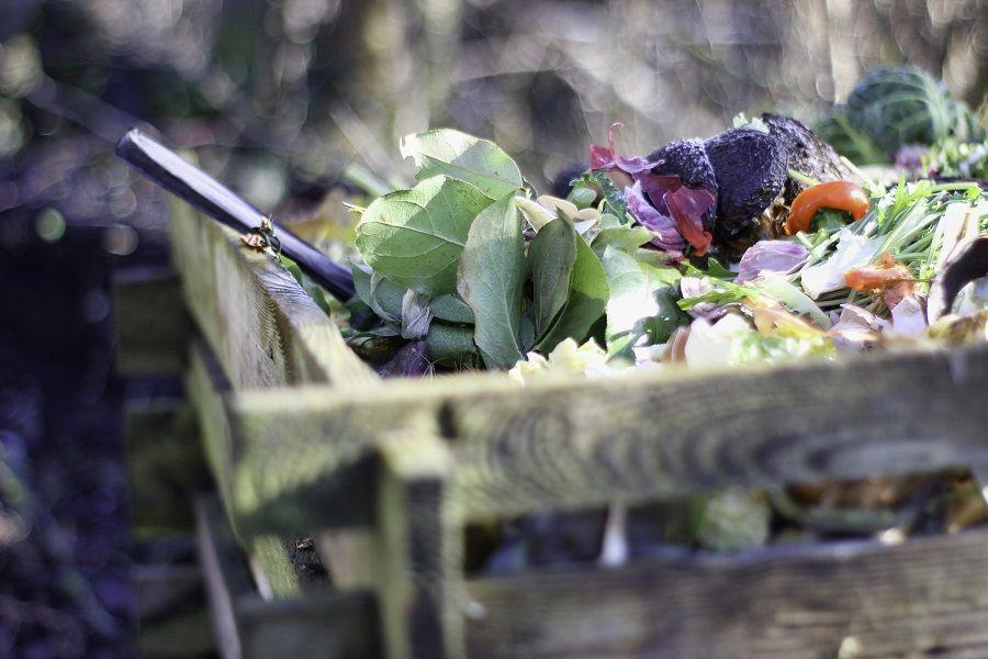 Gemüsereste auf einem Komposthaufen