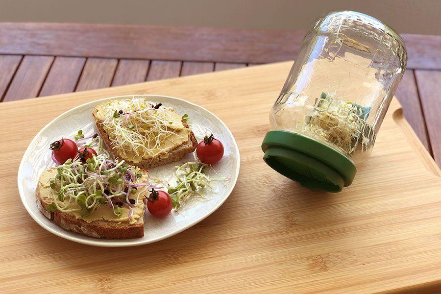 Teller mit Broten belegt mit Sprossen und vollem Sprossenglas.
